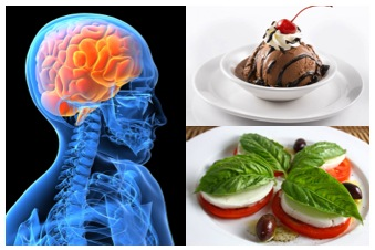 Food and the Brain - Hunger Satisfaction