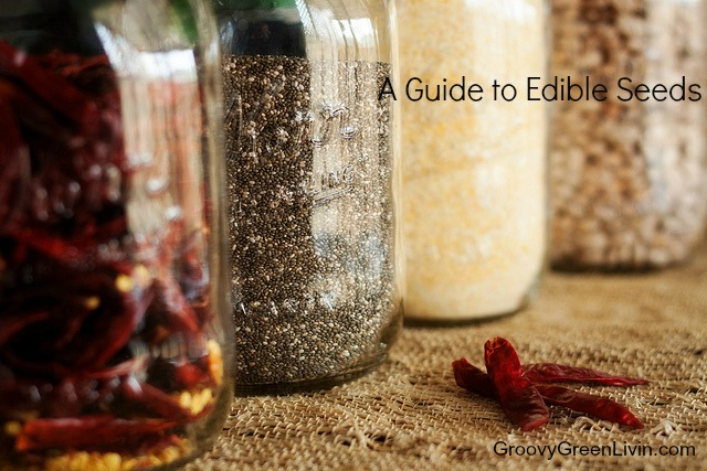 A Guide to Edible Seeds