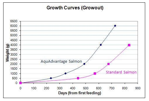 GMO salmon growth graph