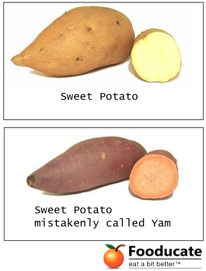 Is that a Yam or Sweet Potato? What's the Difference?