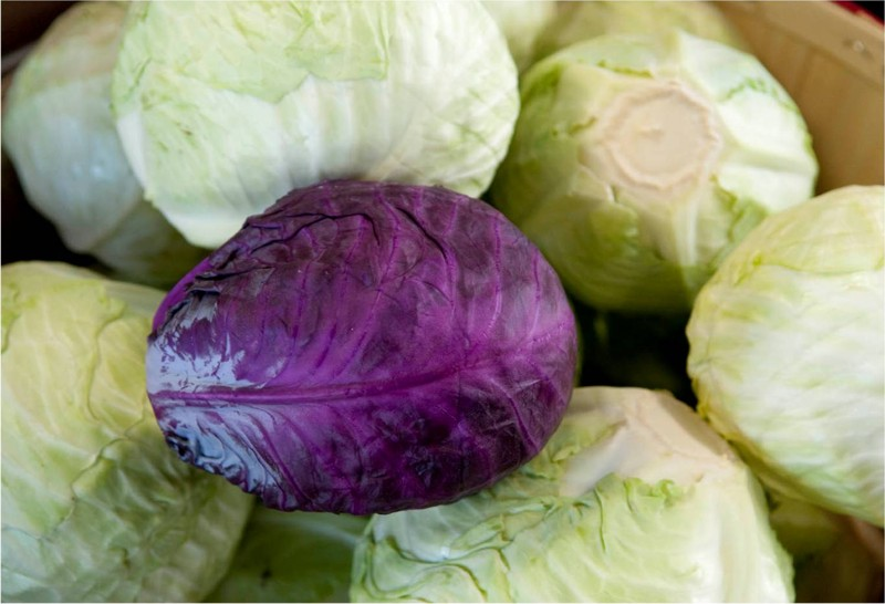 Tis the Season ... for Cabbage?