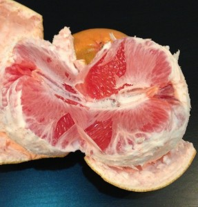 Return of the Killer Grapefruit ?