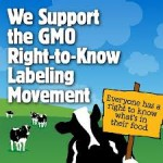 The Curious Timing of Ben &amp; Jerry's No GMO Announcement