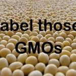 GMO Labeling Momentum Grows