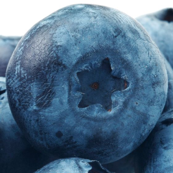9 Reasons to Eat More Blueberries Today