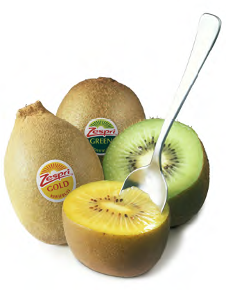Kiwi – Eat More! Here are 10 Convincing Reasons