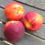 Nectarines - 5 Surprising Facts [Bonus Recipe included]