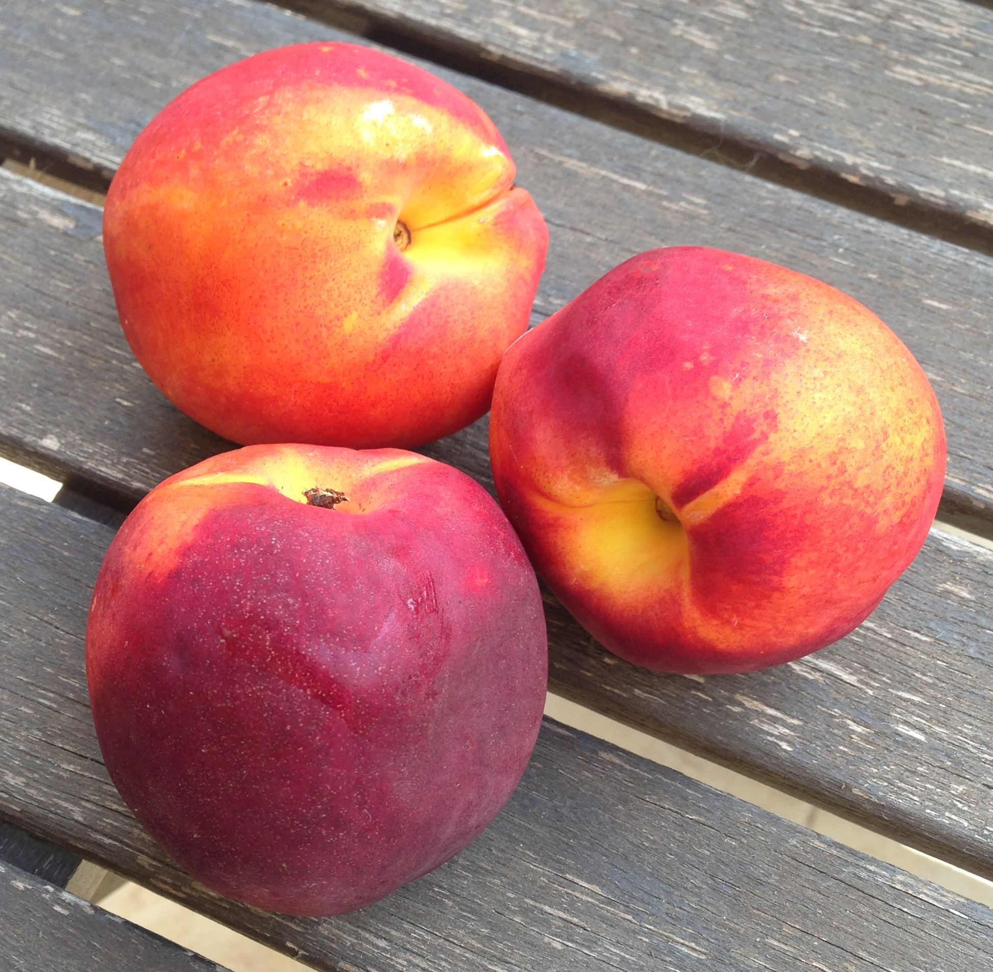 Nectarines – 5 Surprising Facts [Bonus Recipe included]
