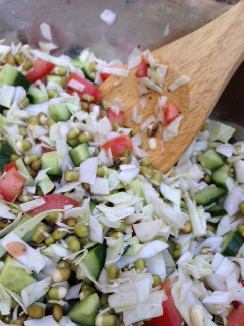 Meatless Monday: Sprouted Mung Bean Salad