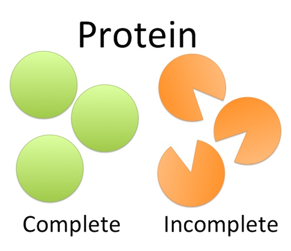 Complete Protein: The Complete Facts