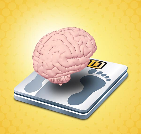 Weight Loss And Your Brain