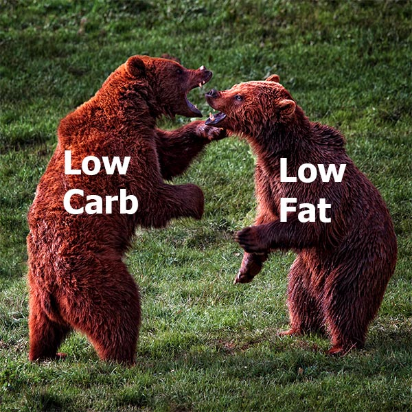 Low-Carb or Low-Fat – Which Diet is Better For Weight Loss?