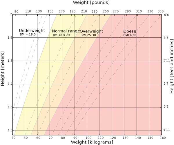 The Bogus BMI