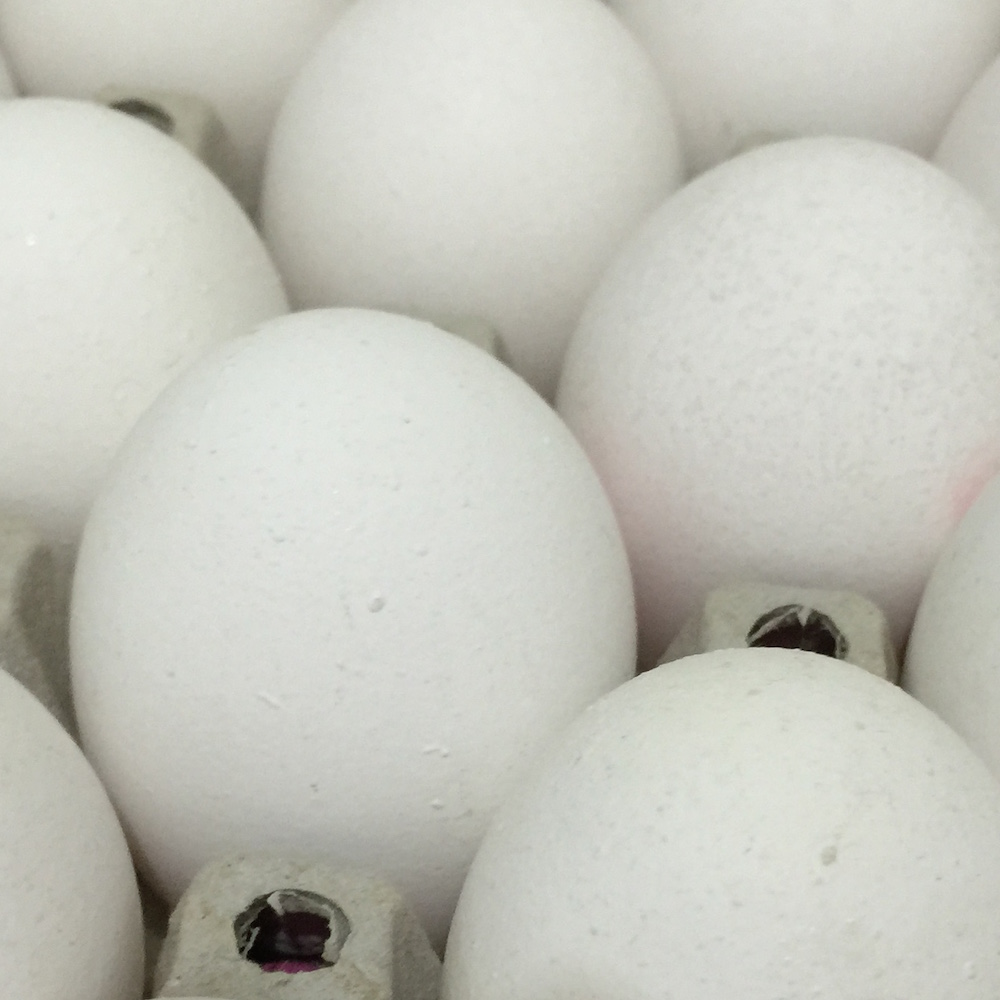 Eight Egg Facts Ahead of Easter