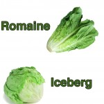 Does Lettuce Have Any Nutrition or Does it Just Fill Me Up?