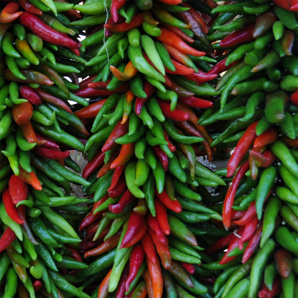 Want to Live Longer? Spice it Up!