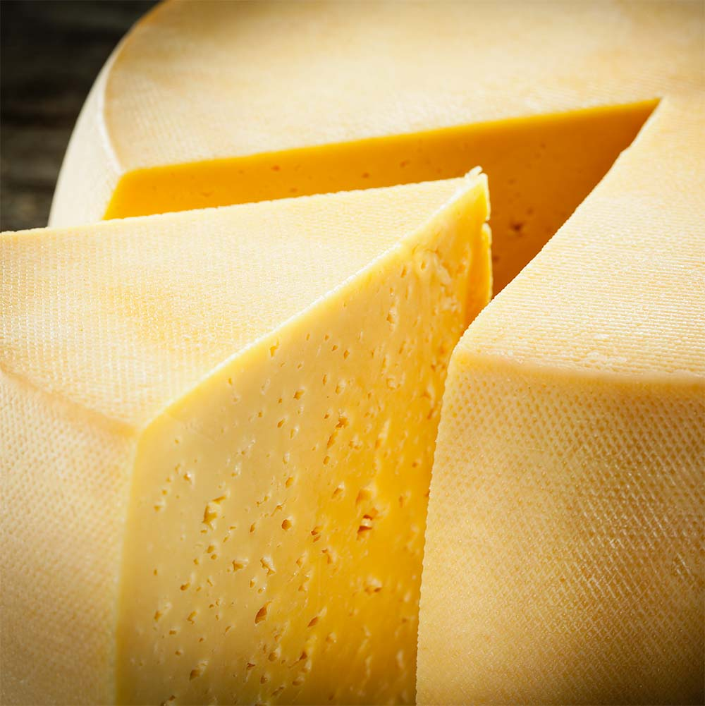 Cheese as an Addictive Drug