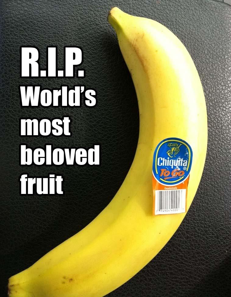 Bananas, RIP