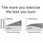 This is Why You Should Exercise for Health, Not Weight Loss