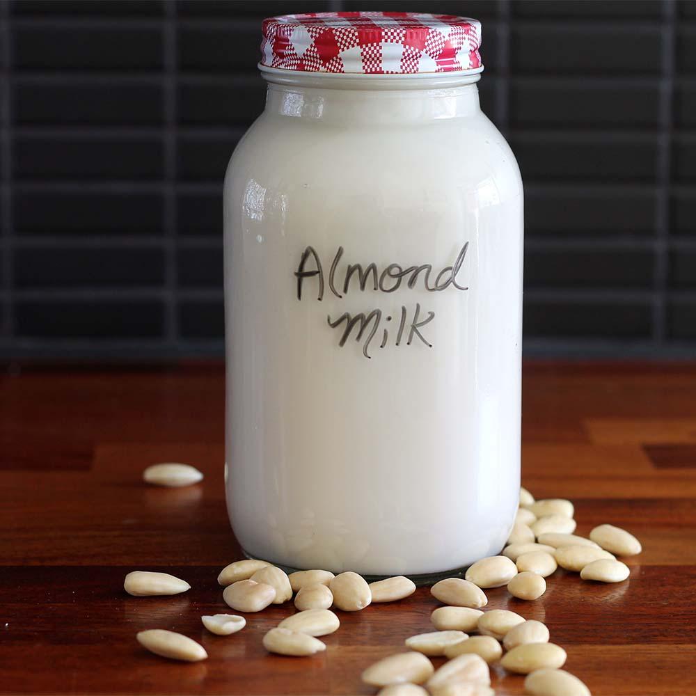 DIY Dairy-Free Milk